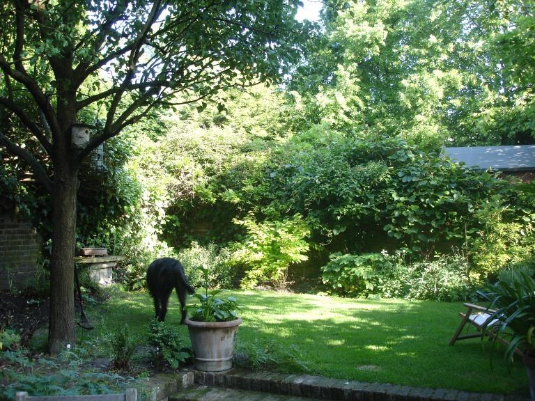 garden-002